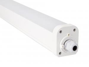 8025 IP65 Waterproof Lighting Fixture