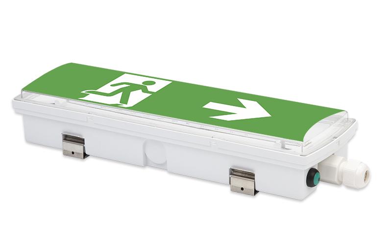 VBK-P series IP65 LED Emergency Bulkhead